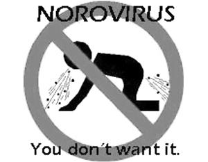 Норовирус на Олимпиаде перекинулся на спортсменов