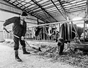 Дешевые кредиты стали намного доступней российским фермерам