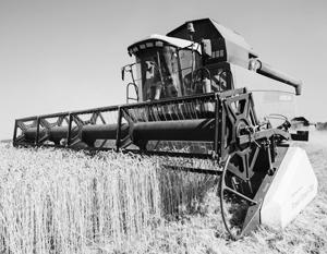 Засуха на Украине и юге России даст российским аграриям возможность заработать при меньшем урожае