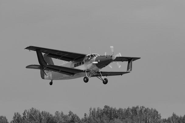 Новый самолет на смену легендарному Ан-2 создан в России. Его прототип, впервые поднявшийся в воздух под Новосибирском, напоминает своего предшественника, однако отличается от него оригинальной конструкцией крыла