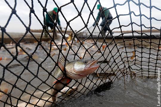 Евросоюз «катастрофически» урезал квоты для латвийских рыбаков