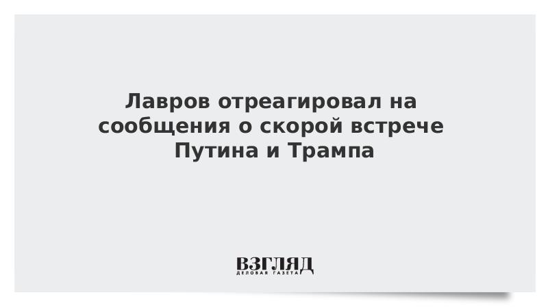 Лавров отреагировал на сообщения о скорой встрече Путина и Трампа