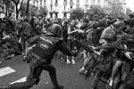 Полиция разгоняет митингующих каталонцев (фото: Manu Fernandez/AP/ТАСС)