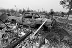 Страховая компания Aon Benfield оценила ущерб от лесных пожаров в 100 млн долларов (фото: Fred Greaves/Reuters)