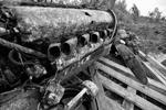 Самолет, затонувший на глубине 18метров, хорошо сохранился (фото: Лев Федосеев/ТАСС )