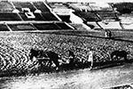 Еще в 30-х годах траву на «Динамо» сеяли при помощи лошадей. Отныне здесь лежит газон с подогревом (фото: РИА «Новости»)