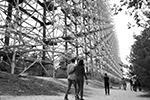 В связи с особым административно-правовым статусом  на территории Чернобыльской зоны действует контрольно-пропускной режим (фото: Стрингер/РИА «Новости»)