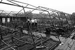 В палаточном лагере на территории горнолыжного комплекса «Холдоми» в Солнечном муниципальном районе Хабаровского края в ночь на вторник произошел пожар. По последним данным, погибли четыре ребенка, еще несколько пострадали. Причем детям приходилось спасать друг друга (фото: 27.mchs.gov.ru)
