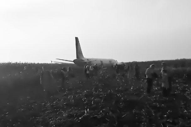 Попадание птиц в турбины двигателей самолетов отнюдь не редкость. Однако не все происшествия заканчиваются столь удачно