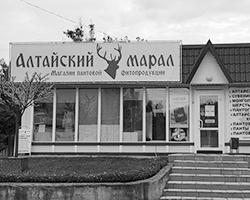 (фото: Юрий Васильев/ВЗГЛЯД)