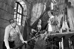Режиссер-постановщик фильма «Тот самый Мюнхгаузен» Марк Захаров (слева) проводит репетицию. Актеры Елена Коренева (Марта), Олег Янковский (Барон Мюнхгаузен) (фото:  Коньков Александр/ТАСС)