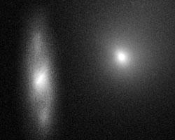 комета Борисова (фото: ESA and D. Jewitt  (UCLA)/NASA)