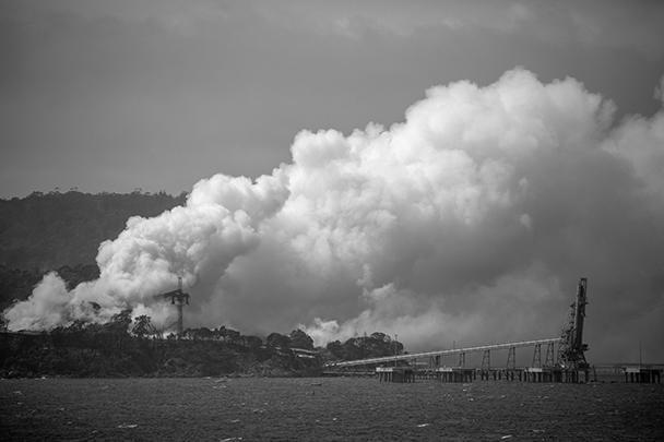 Крупнейшие города охвачены дымом – закрываются посольства, отменяют спортивные соревнования. В том числе под угрозой Открытый чемпионат Австралии по теннису, его могут перенести на закрытые корты или отменить