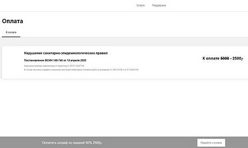 Предложение «оплатить штраф со скидкой 50%» на фальшивом сайте «Госуслуги». Фото предоставлено компанией «Интернет-розыск»