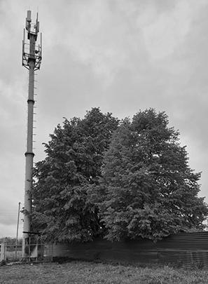Та самая вышка сотовой связи в селе Ногир. За забором — кладбище.