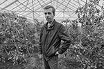 Андрей Антонов и его теплица. Село Эссо(фото: Юрий Васильев/ВЗГЛЯД)