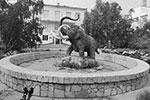 Памятник мамонту возле Института мерзлотоведения в Якутске (фото: Андрей Манчук)