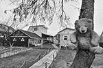 Деревня Петрищево(фото: Юрий Васильев/ВЗГЛЯД)