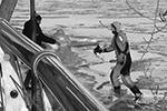 Продрогшую птицу доставили на берег, где передали волонтеру из Центра реабилитации животных в Яхроме(фото: Bunakov/Мобильный репортер)