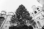 Главная новогодняя елка страны установлена на Соборной площади Московского Кремля. 96-летняя ель украшена 1,1 тыс. игрушек и 2,4 тыс. метров светодиодных гирлянд, оформленных по мотивам сказки «Морозко»(фото: Кирилл Зыков/Агентство «Москва»)