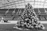 В Сочи новогоднюю ель на стадионе «Фишт» изготовили из 258 футбольных мячей с различных международных турниров (фото: Екатерина Лызлова/РИА Новости)