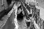 Часть каналов Венеции пересохла из-за отлива, который привел к снижению уровня воды на полметра. Многие гондолы и лодки оказались на мели. Это затрудняет передвижение по городу. Навигация сохраняется на Гранд-канале, который тоже заметно обмелел(фото: REUTERS/Manuel Silvestri)