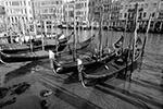 Трудно представить, но еще два месяца назад «Королева Адриатики» страдала от приливов. Например, знаменитая на весь мир площадь Сан-Марко была затоплена(фото: REUTERS/Manuel Silvestri)