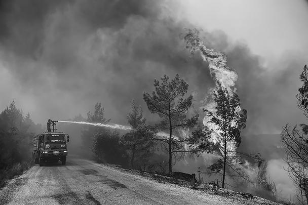 Всего за последние три дня произошел 41 лесной пожар в 13 турецких провинциях, 31 из них взят под контроль