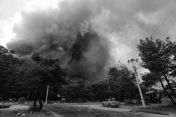 По данным полиции Турции, один из предполагаемых виновников был замечен местными жителями в момент поджога. Из-за аномально высокой температуры в регионе и сильного ветра пожары распространились очень быстро
