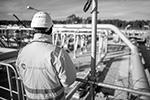 Строительство газопровода «Северный поток – 2», против которого активно выступали США и несколько стран Восточной Европы, было полностью завершено утром в пятницу, 10 сентября. Поставки планируется начать в начале октября, однако перед этим предстоит получить сертификат от немецкого регулятора(фото: Jens Büttner/DPA/Global Look Press)