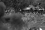 По информации местных СМИ, ополченцы прочесывают близлежащую лесополосу в поисках украинских силовиков (на фото). По некоторым данным, бронетехника силовиков отведена, но сами военные могли рассредоточиться поблизости от блокпоста(фото: Reuters)