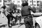 «Организации ЛГБТ обычно позиционируют себя как защитников «невинных жертв», страдающих от «гомофобии». Но в действительности они исповедуют крайне агрессивную идеологию, которая не терпит инакомыслия», – напутствовал своих единомышленников вождь «Правого сектора» Дмитрий Ярош. Милиционерам также пришлось действовать нетолерантно(фото: Reuters)