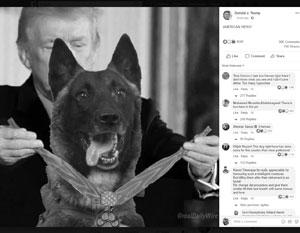 Трамп уверяет, что скоро лично наградит пса Кэнона в Белом доме