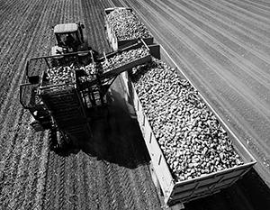 Сельскохозяйственное производство в какой-то мере покроет убытки от падения цен на нефть