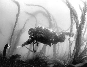 Подводные изыскания в Балтийском море имеют большое историческое значение