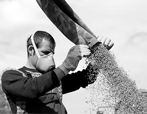 Производство собственных семян – стратегическая задача для России