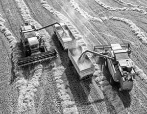 Значительная часть сырья и техники для сельского хозяйства закупается за рубежом