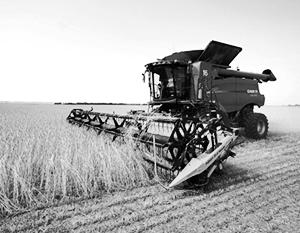 Россия подтверждает статус великой сельскохозяйственной державы