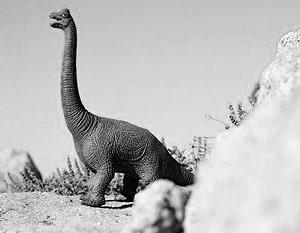 В указанное время и произошло глобальное вымирание многих видов животных