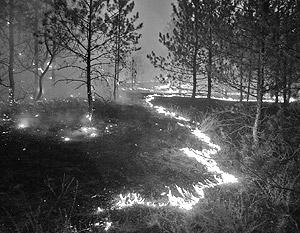 Огонь и жаркая погода вместе способны доставить человеку много проблем