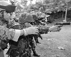 Американские ученые уже несколько лет по заказу Пентагона разрабатывают различные виды так называемого несмертельного оружия