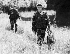 Между Украиной и Белоруссией пограничники эффективнее пресекают нелегальный трафик сала, нежели оружия