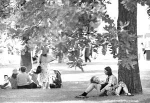 В Александровском саду найдены крайне опасные для репродуктивной функции человека вещества