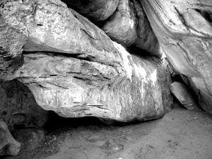Большой камень, по форме напоминающий питона