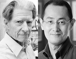 Джон Гердон и Синья Яманака – новоиспеченные обладатели Нобелевской премии
