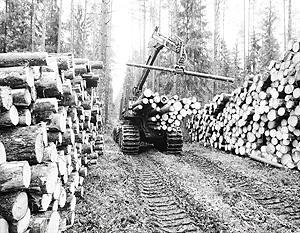 ЕС не устраивает процедура поставки древесины на экспорт в рамках ВТО, но это лишь одна из претензий