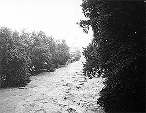Потоп в Сочи вызвал большой резонанс в соцсетях