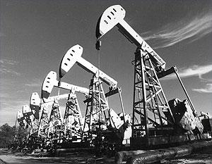 Мнение внутри ОПЕК по цене на нефть резко разошлись