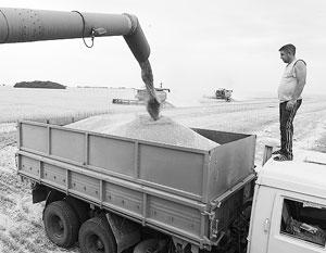 Экспортировать зерно из России сейчас как никогда выгодно