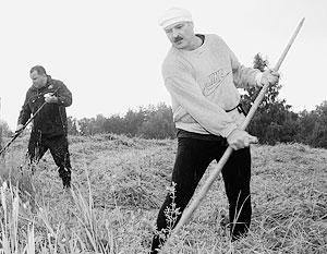 Александр Лукашенко подсчитывает потери от кризиса в России и падения цен на нефть